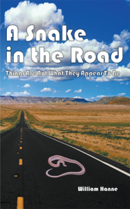 A Snake in the Road Front Cover